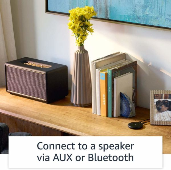 Echo Input – Bring Alexa To Your Own Speaker 3